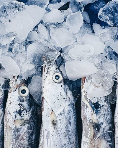 riviera-gourmet-fish-supply